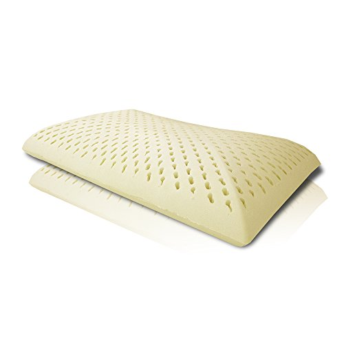 Price comparison product image Sabady Thailand Latex Pillow 100% Natural Ventilated Latex Bed Pillows for Neck/Shoulder Pain with Zippered Cover - 22 x 13.8 x 4.3 inches, Firm (European Standard Pillow)
