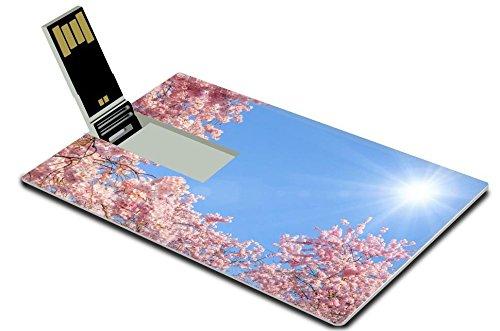 liili-16gb-usb-flash-drive-20-memory-stick-credit-card-size-image-id-17897589-blossoming-cherry-tree