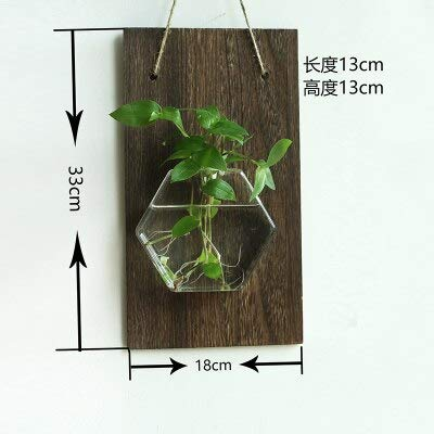 Wood Shelf Plaques & Signs - Hanging Glass Vase Hanging Pot Container Wall Adornment Wall Act The Role Ofing Literary Hydroponic Plants 1 Pcs - Wood Vases Bulk - Wood Vase Holder