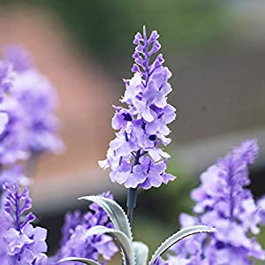 Guagb Artificial Lavender Silk Flowers Plastic Fake Plant Make a Bountiful Flower Arrangement Decor Your Outdoor Indoor House 4