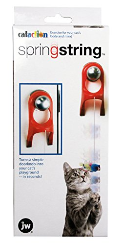 JW-Pet-Company-Spring-String-Cat-Toy
