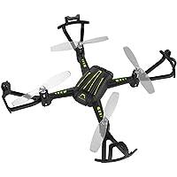 Flight Force Stunt Drone