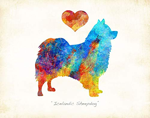 Icelandic Sheepdog Dog Breed Watercolor Art Print by Dan - Breeds Poster Sheep