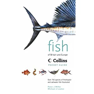 Fish of Britain & Europe (Collins Pocket Guide)