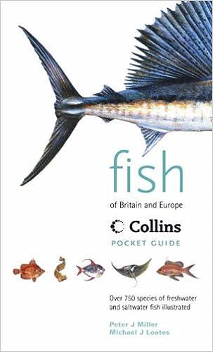 Fish of Britain /& Europe