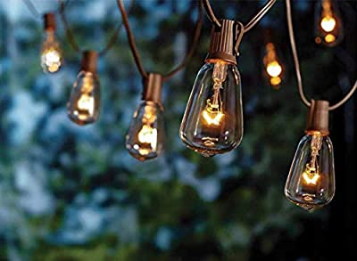SkrLights 20Ft Outdoor Patio String Lights,Set of 20 Glass ST40 Edison Style Bulb String Lights Garden/Backyard Party/Wedding Indoor String Lights(Plus 1 Extra Bulbs)