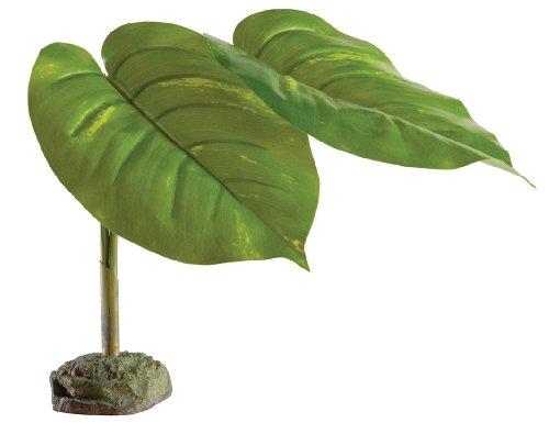 Exo Terra PT2973 Scindapsus Plant