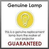Lampedia Projector Lamp for HITACHI CP-SX8350 / CP-WU8450 / CP-WX8255 / CP-WX8255A / CP-X8160