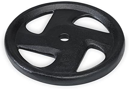 SPRI Weight Plate 1-Inch Cast Iron Standard 4 Grip Plate Available in 5, 10, 25, 35 Pounds - All Plates Sold Separately