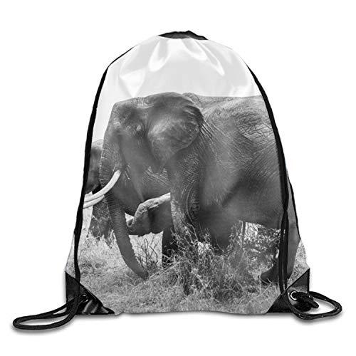 Adventure Africa African Elephants Unisex Home Gym Sack Bag Sport Drawstring Backpack Bag by GARFLA