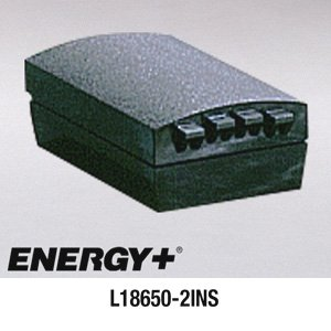 Lithium Ion Battery Pack 317-099-001, 318-001-001, 318-007-001 L18650-2INS