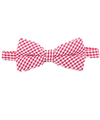 Gingham Bow - Noah's Boytique Baby Infant Toddler Red and White Gingham Bow Tie BowTie with Neck Strap Cake Smash Photo Prop