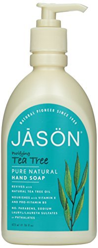 Pack of 1 x Jason Pure Natural Purifying Tea Tree Hand Soap - 16 fl oz by Jason Natural Products (Jason Tea Tree Hand Soap)