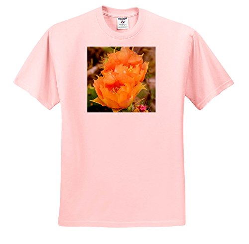 Boca One Light - Danita Delimont - Flowers - USA, Texas, Boca Chica. Prickly Pear Cactus In Bloom. - T-Shirts - Light Pink Infant Lap-Shoulder Tee (18M) (TS_260085_71)