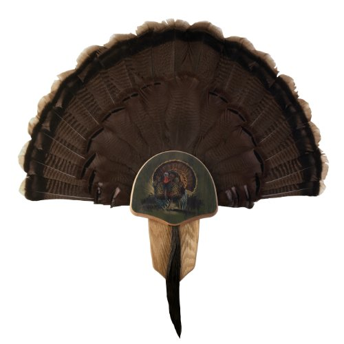 Country Turkey - Walnut Hollow Country Turkey Fan Mount & Display Kit, Oak with Drumsticks Image