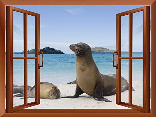 Sea Lions at the Beach outside of an Open Window Removable Wall Sticker Wall Mural