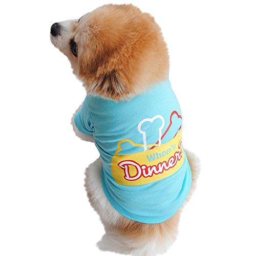(Smdoxi Cotton Summer as Dinner Letter Bone Vest Puppy cat pet Clothes Fashion Shirt Dog cat Cute Cool t-Shirt)