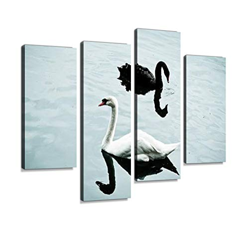 Black and White Swans Canvas Wall Art Hanging Paintings Modern Artwork Abstract Picture Prints Home Decoration Gift Unique Designed Framed 4 - Black Swans Pictures