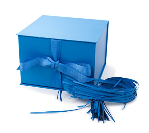 Hallmark Large Solid Color Gift Box (Blue with Filler)
