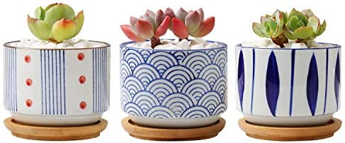 T4U 3.2 Inch Ceramic Japanese Style Succulent Pot with Free Bamboo Tray Pack of 3, Cactus Planter Container Home and Office Windowsill Desktop Bonsai Pots Decoration for Gardener Christmas Wedding