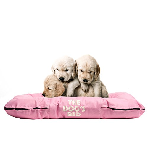 Dogs Waterproof Embroidered Washable Boarding product image