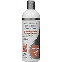 SynergyLabs Veterinary Formula Clinical Care Hot Spot & Itch Relief Medicated Shampoo for Dogs and Cats; 16 fl. oz.