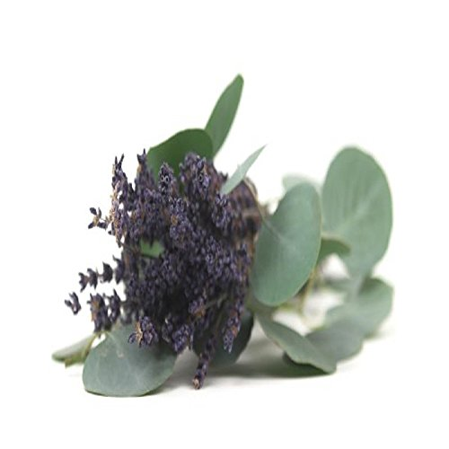 LAVENDER EUCALYPTUS FRAGRANCE OIL - 4 OZ - FOR CANDLE & SOAP MAKING BY VIRGINIA CANDLE SUPPLY - FREE S&H IN USA