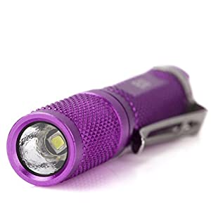 GLAREE E03 Keychain Flashlight, CREE LED 150 Lumens Mini Torch AAA Battery EDC Pocket Penlight Portable Emergency Light, Purple