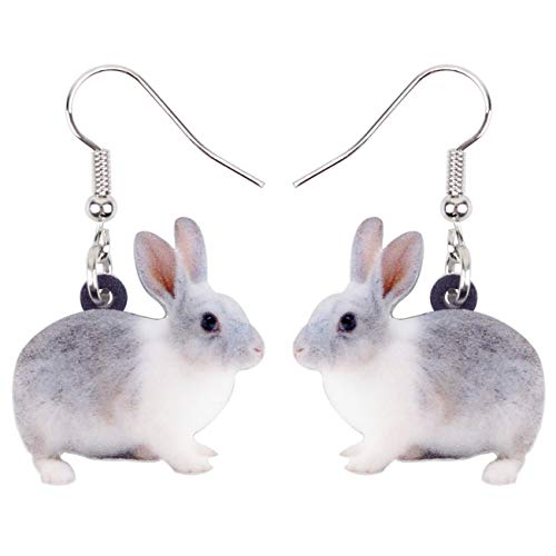 Bonsny Acrylic Drop Dangle Easter Bunny Hare Rabbit Earrings Jewelry For Women Girls Kids Gift Charms -