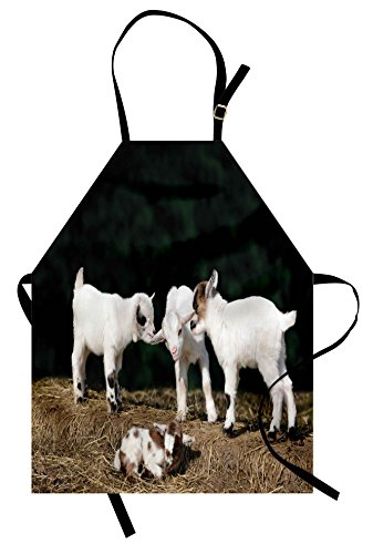 Ambesonne Animal Apron, Cute Adorable Baby Sibling Goats Playing Eachother on a Solid Rock in a Farm, Unisex Kitchen Bib Apron with Adjustable Neck for Cooking Baking Gardening, White and Brown by Ambesonne
