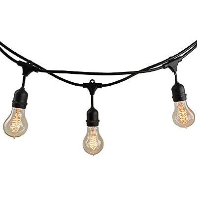 Bulbrite 810007 String10/E26/Black-NOSA19KT Indoor & Outdoor String Light w/Incandescent 25W Nostalgic Spiral A19 Bulbs, 14', 10 Lights, Medium/E26 Base