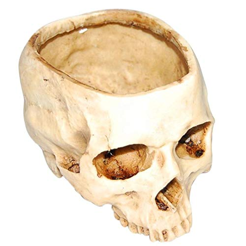 VT BigHome Human Skull Model Flower Pot Shining Fancy Multifunctional Plate Storage Tank Container Crafts Home Decor