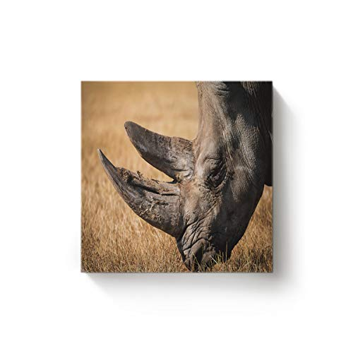 EZON-CH Square Canvas Wall Art Oil Painting Christmas Office Home Decor,3D Animal Rhinoceros Face Pattern Artworks,Stretched by Wooden Frame,Ready to Hang,24 x 24 Inch -