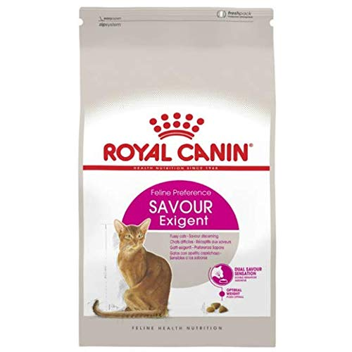 Royal Canin Cat Food Exigent Savour Sensation Dry Mix 10kg Combined With 4.5cm Natural Catnip Ball Hours Of Natural Fun