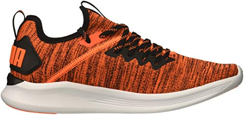 Men's Puma Flash puma Sneaker Orange Black Ignite Evoknit Shocking AwwqZp6