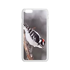 The Bird Hight Quality Plastic Case for Iphone 6