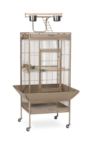 Prevue Pet Products Wrought Iron Select Bird Cage 3152COCO Coco Brown, 24-Inch by 20-Inch by 60-Inch, My Pet Supplies