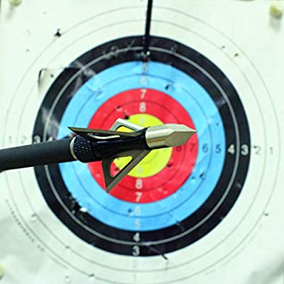 Archery Broadheads 100 Grain Bowhunting Arrow Head 3 Fixed Blades 6 Pack