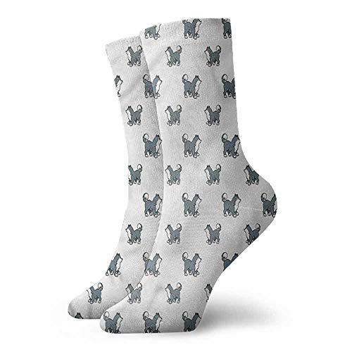 Hot sale Socks Dog,Siberian Husky Puppy 3.4