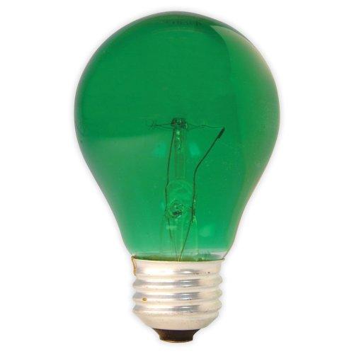 GE Lighting 49725 25-Watt A19 Party Light, Green