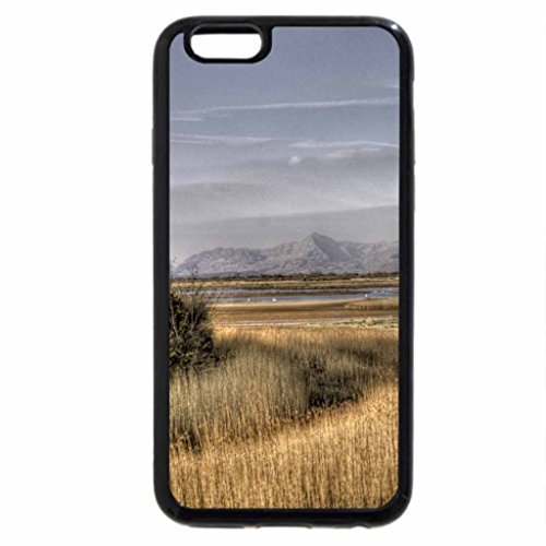 iPhone 6S / iPhone 6 Case (Black) great wetlands landscape hdr