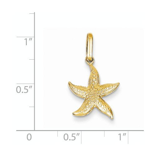 K/&C 14k Yellow Gold Textured Hollow Starfish Pendant on 14K Yellow Gold Rope Chain Necklace