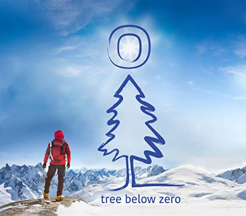41B8fRx4Y%2BL - Tree Below Zero Sparkling Juice Flavored Hemp Infused Soda, Full Case of 12 12oz cans (Cranberry Ginger)