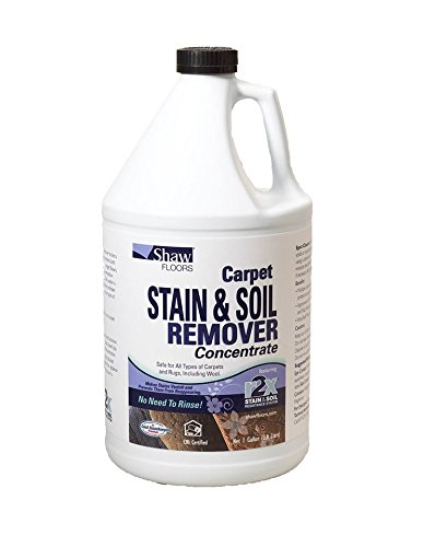Shaw R2X Carpet Stain & Soil Remover Concentrate 1 Gallon (Remover Stain Ketchup)
