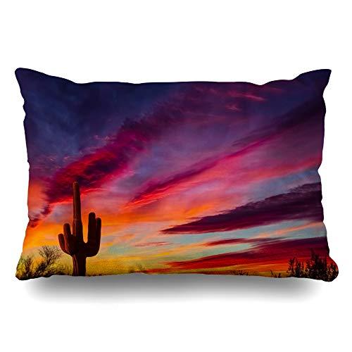 Ahawoso Throw Pillow Cover Queen 20x30 Red Desert Arizona Saguaro Cactus Sunset Nature Parks Purple Night Zippered Cushion Pillow Case Home Decor Pillowcase