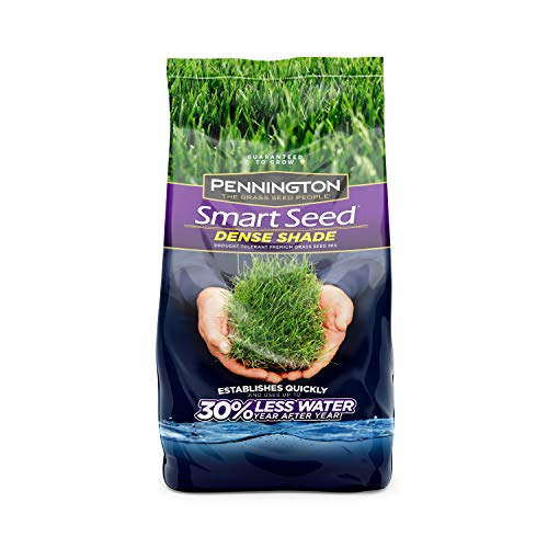 Pennington 100526625 Smart Seed Dense Shade Grass Seed, 3 LB (Best Turf For Shade)