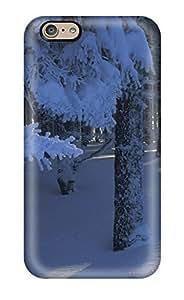 New Premium Flip Case Cover Winter Sunshine Skin Case For iphone 5c WANGJING JINDA