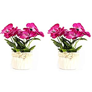 Serendipity Decorative Modern Artificial Potted Fake Succulent Plants for Decoration, Small, Purple Pansy Flower, Set of 2 51