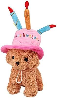Smilikee - Gorro de cumpleaños para Perro o Gato con diseño ...