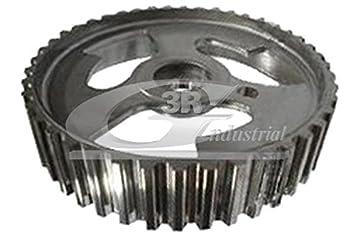 3RG 10260 Polea inversión/guía, correa distribución: Amazon.es: Coche y moto